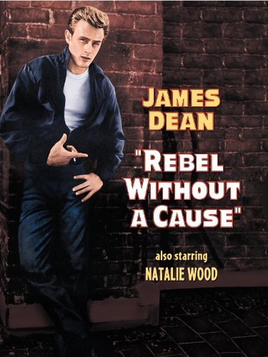 Rebel without a cause summary essay on is google